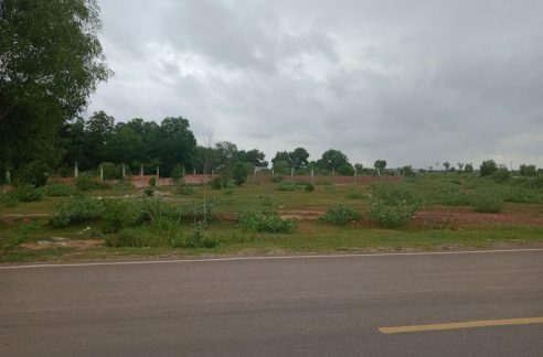 Potential Land for Sale in Bakong Village Siem Reap