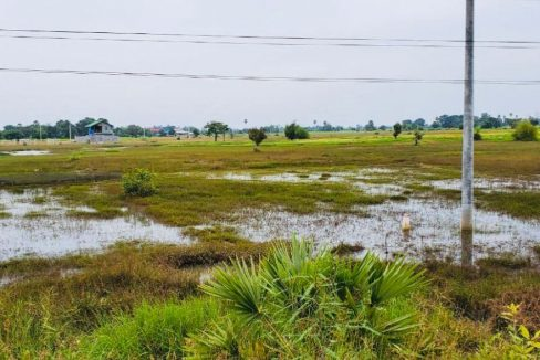 Good Land for Sale along National Road 51 (2)