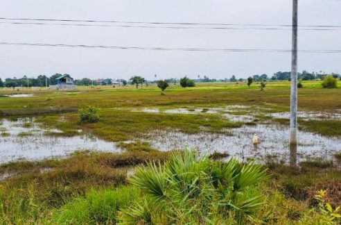 Good Land for Sale along National Road 51 (2)